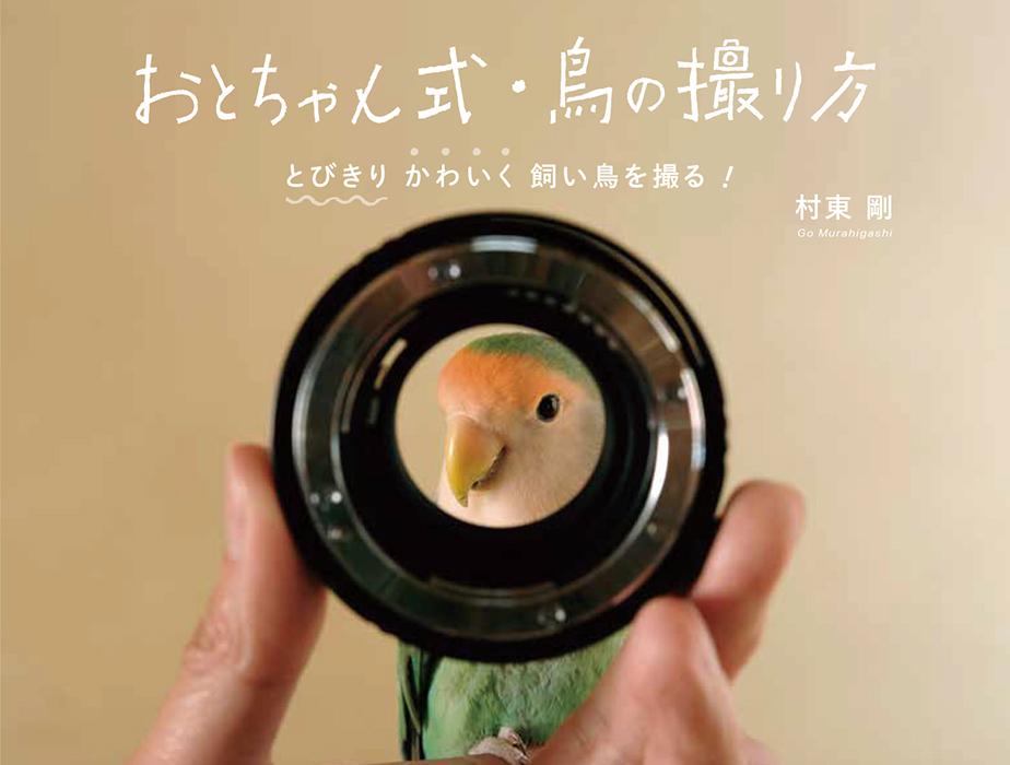 画像: おとちゃん式 鳥の撮り方