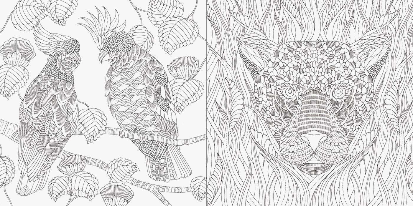 動物たちと花のぬり絵 ゆめの楽園 Pie International