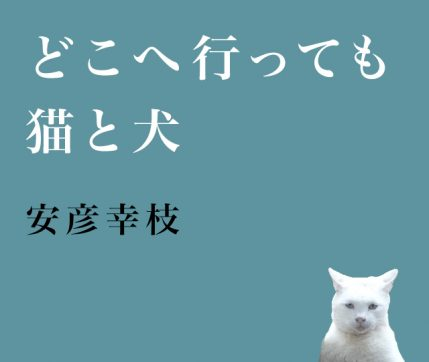 どこへ行っても猫と犬